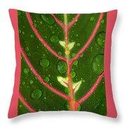 Prayer Plant Vertical Throw Pillow