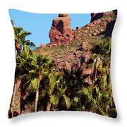 Praying Monk Throw Pillow
