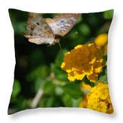 Pre Landing Throw Pillow