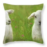 Precious Lambs Throw Pillow