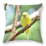 Precious Little Yellow Parakeet In The Wild Throw Pillow