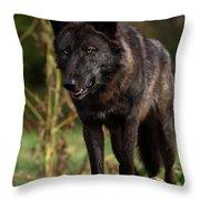 Predator Throw Pillow