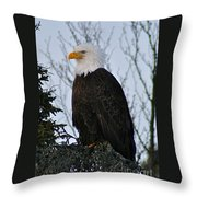 Predator Profile Throw Pillow