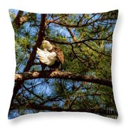 Preening Bald Eagle Throw Pillow