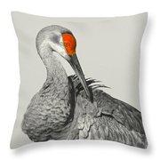 Preening Crane Throw Pillow
