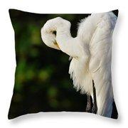 Preening Egret Throw Pillow