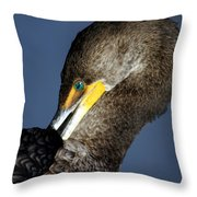 Preening Throw Pillow by Marty Koch