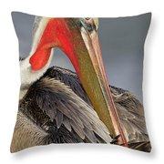 Preening Pelican Throw Pillow