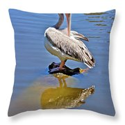 Preening Pelican Throw Pillow