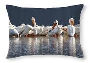 Preening Pelicans Throw Pillow