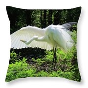 Preening The Wings Throw Pillow