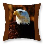 Preexisting Freedom Throw Pillow