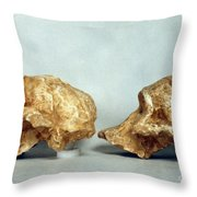 Prehistoric Skulls Throw Pillow