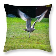 Prepare For Landing Throw Pillow