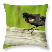 Prepare For Takeoff Throw Pillow