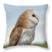 Preparing For Flight Throw Pillow