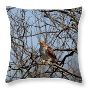Preparing For Take Off Throw Pillow