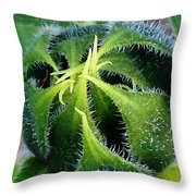 Preparing To Bloom Throw Pillow