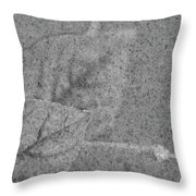 Preserved In Stone Throw Pillow