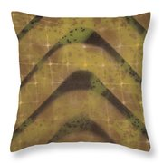 Preserving Power Two Throw Pillow