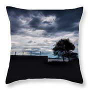 Preserving Time Throw Pillow