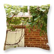 President Buchanan Home Throw Pillow
