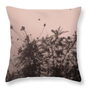 Pressed Daisy Bush Pink Throw Pillow