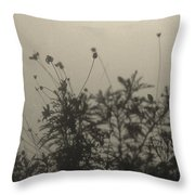 Pressed Daisy Bush Yellow Throw Pillow