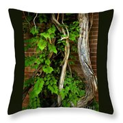 Preston Wall Vine Throw Pillow