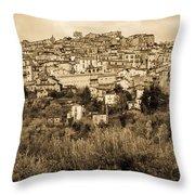 Pretoro - Landscape In Sepia Tones  Throw Pillow