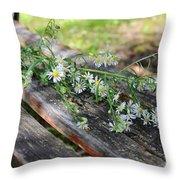 Pretty Bench Throw Pillow