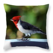 Pretty Bird Throw Pillow