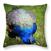 Pretty Blue Throw Pillow