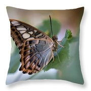 Pretty Butterfly Resting On The Leaf Throw Pillow
