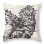 Pretty Collie Beastie Throw Pillow