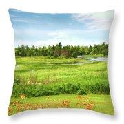 Pretty Countryside Throw Pillow