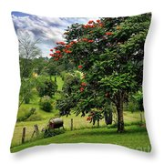 Pretty Countryside Throw Pillow