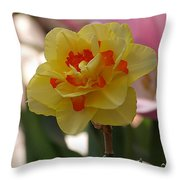 Pretty Daffodil Throw Pillow