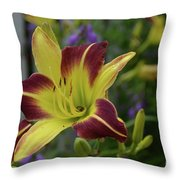 Pretty Flowering Lily In A Garden  Throw Pillow