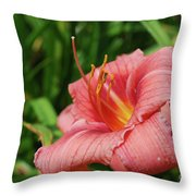 Pretty Flowering Pink Lily In A Garden Throw Pillow