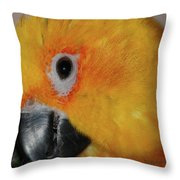 Pretty Girl Throw Pillow