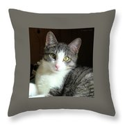 Pretty Girl Kitty Throw Pillow