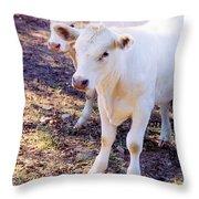 Pretty Girls Throw Pillow