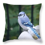 Pretty In Blue Jay Throw Pillow