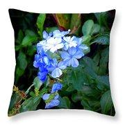 Pretty In Blue Photograph Throw Pillow