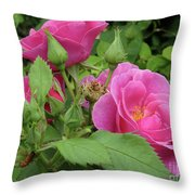 Pretty In Pink 3 Throw Pillow