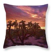 Pretty In Pink Desert Skies  Throw Pillow