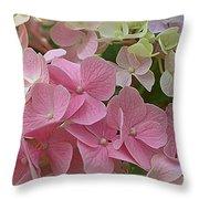 Pretty In Pink Hydrangeas Throw Pillow