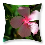 Pretty In Pink Photograph Throw Pillow
