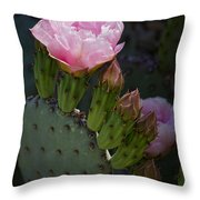 Pretty In Pink Prickly Pear  Throw Pillow